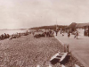 Stokes Bay Tea Rooms