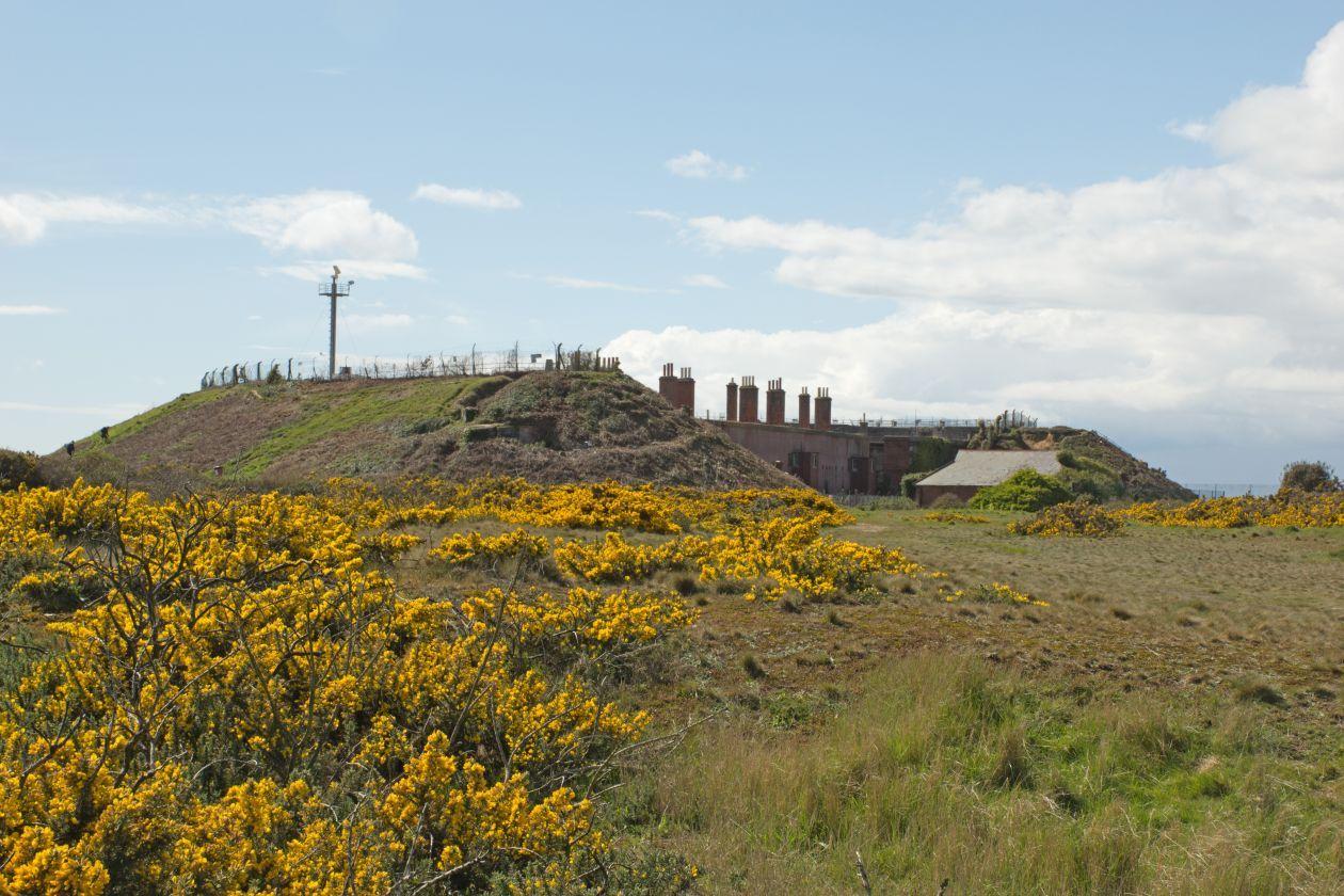 Fort Gilkicker 2