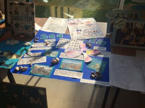 Gomer School Beach School display