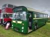 Buses-2021-08