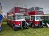 Buses-2021-09