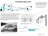 Stokes Bay Lines Interpretation Board 2