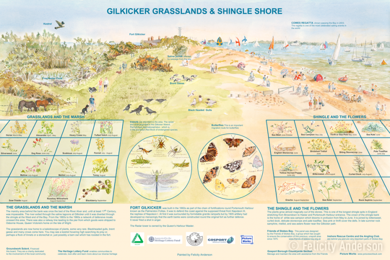 Gilkicker Grasslands and the Shingle Shore