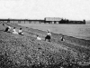 Stokes Bay Pier 1