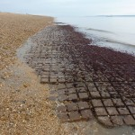 D Day Hard G4 Flexible concrete matting exposed during extremely low tide in 2011